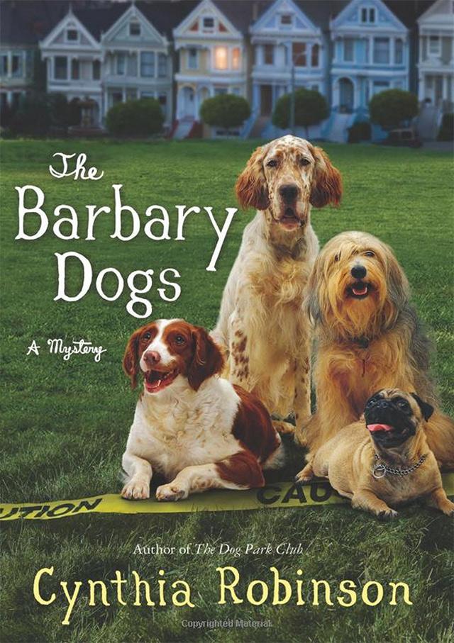 barbary-dogs.jpg