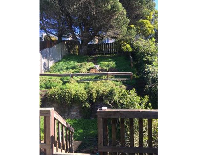 ingleside-basement-garden.jpg