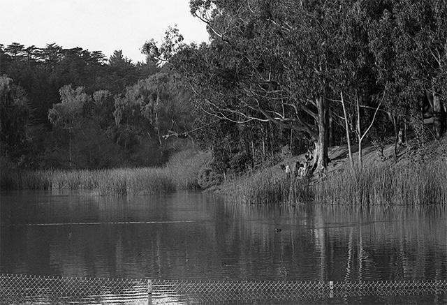 mountain-lake-swing-1.jpg