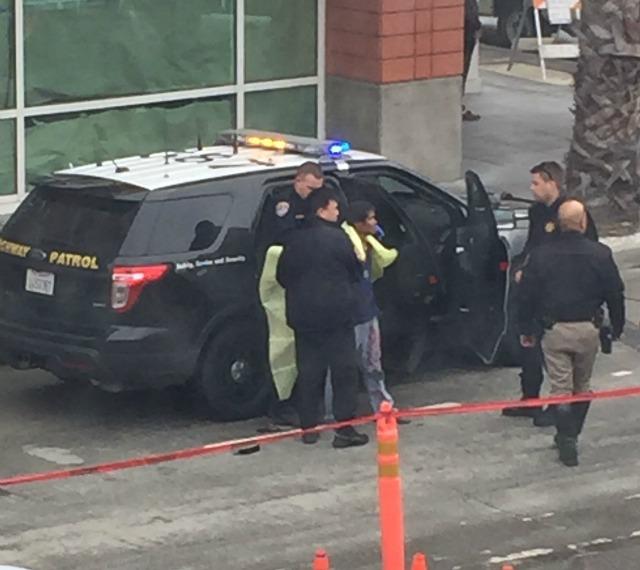 arrest_1.jpg