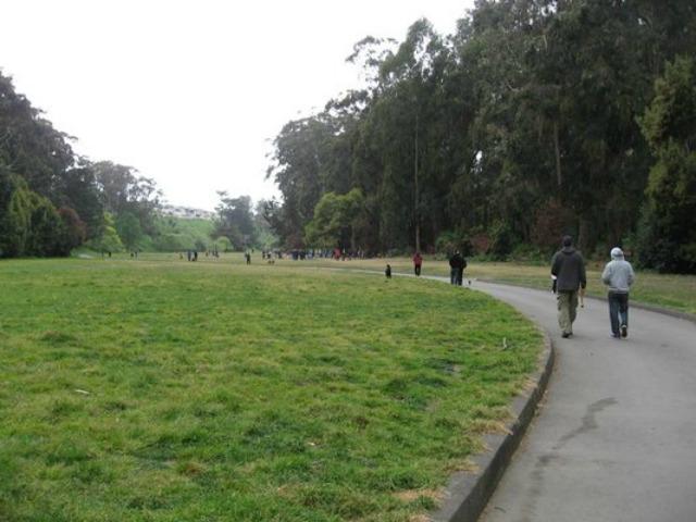 pine_lake_park.jpg