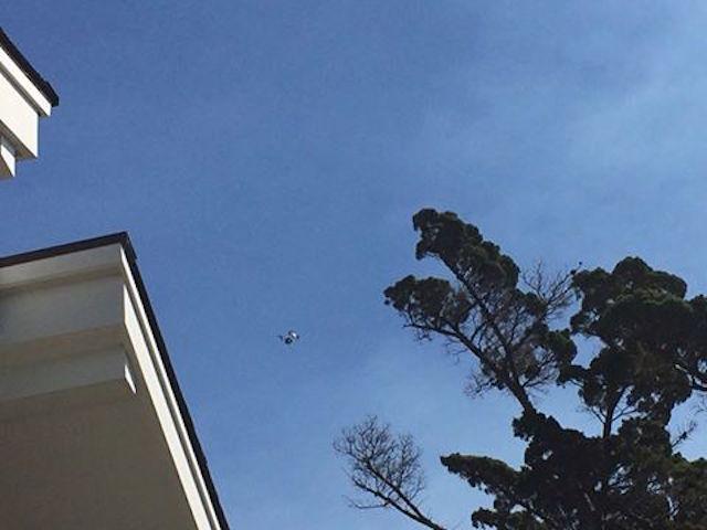 rowe_drone.jpg