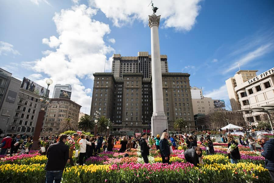 Go Get Some Free Tulips In Union Square On Saturday