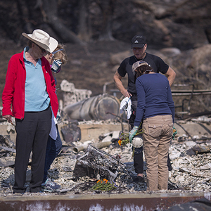 [Update] Northern CA Wildfire Death Count Hits 31; Official Count Of Santa Rosa Homes Burned Rises To 2,834