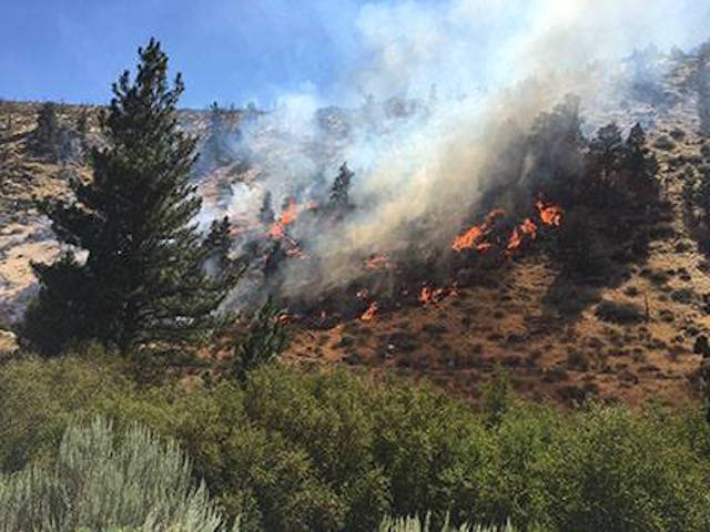 19 homes destroyed in northern Nevada wildfire
